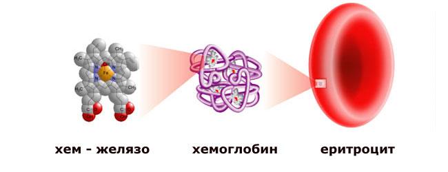 нисък хемоглобин