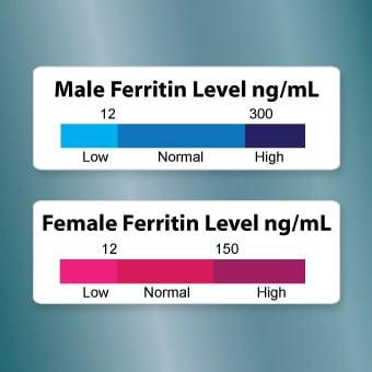 Какви са нормалните нива на феритин