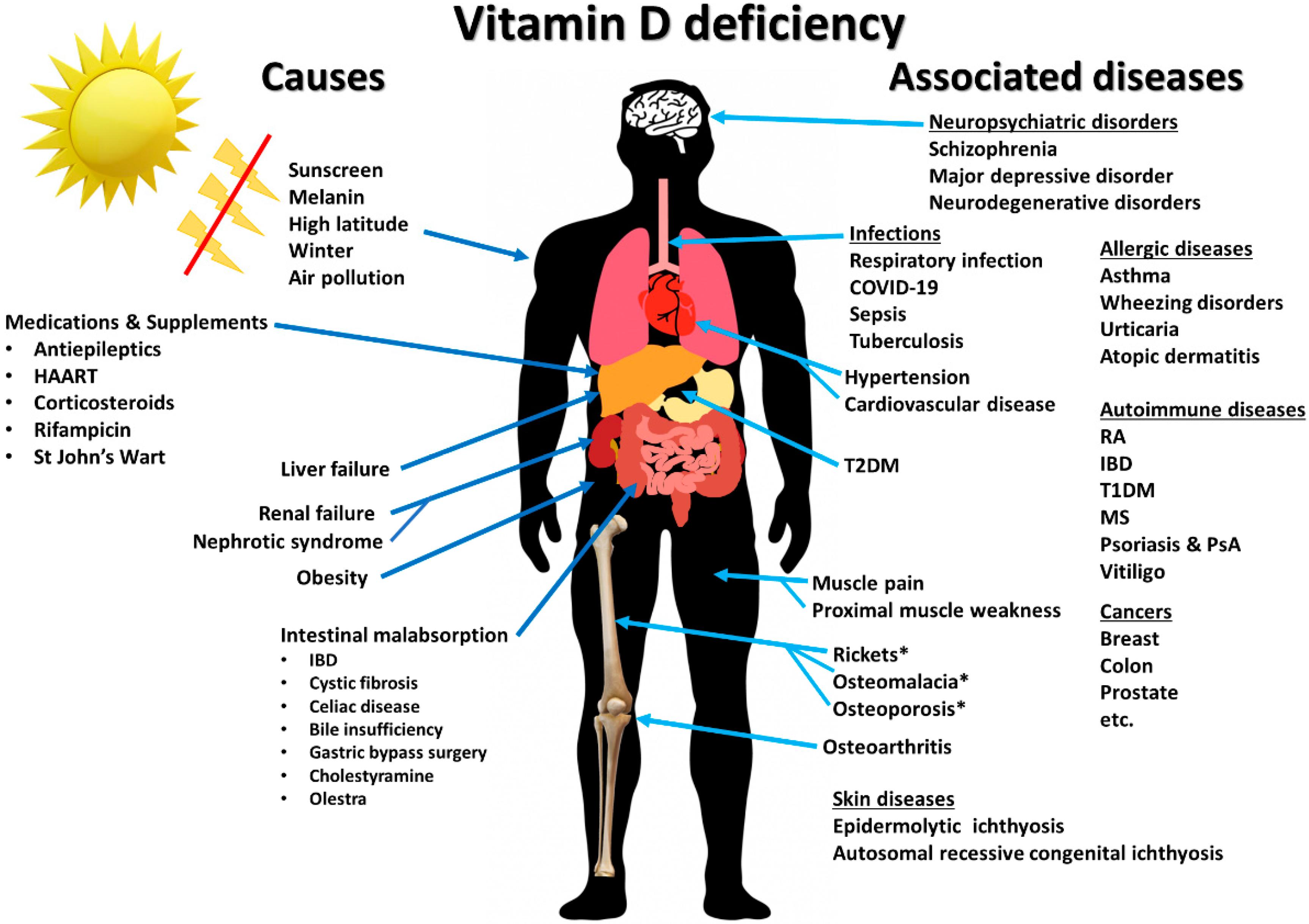 витамин D за предпазване от основни заболявания
